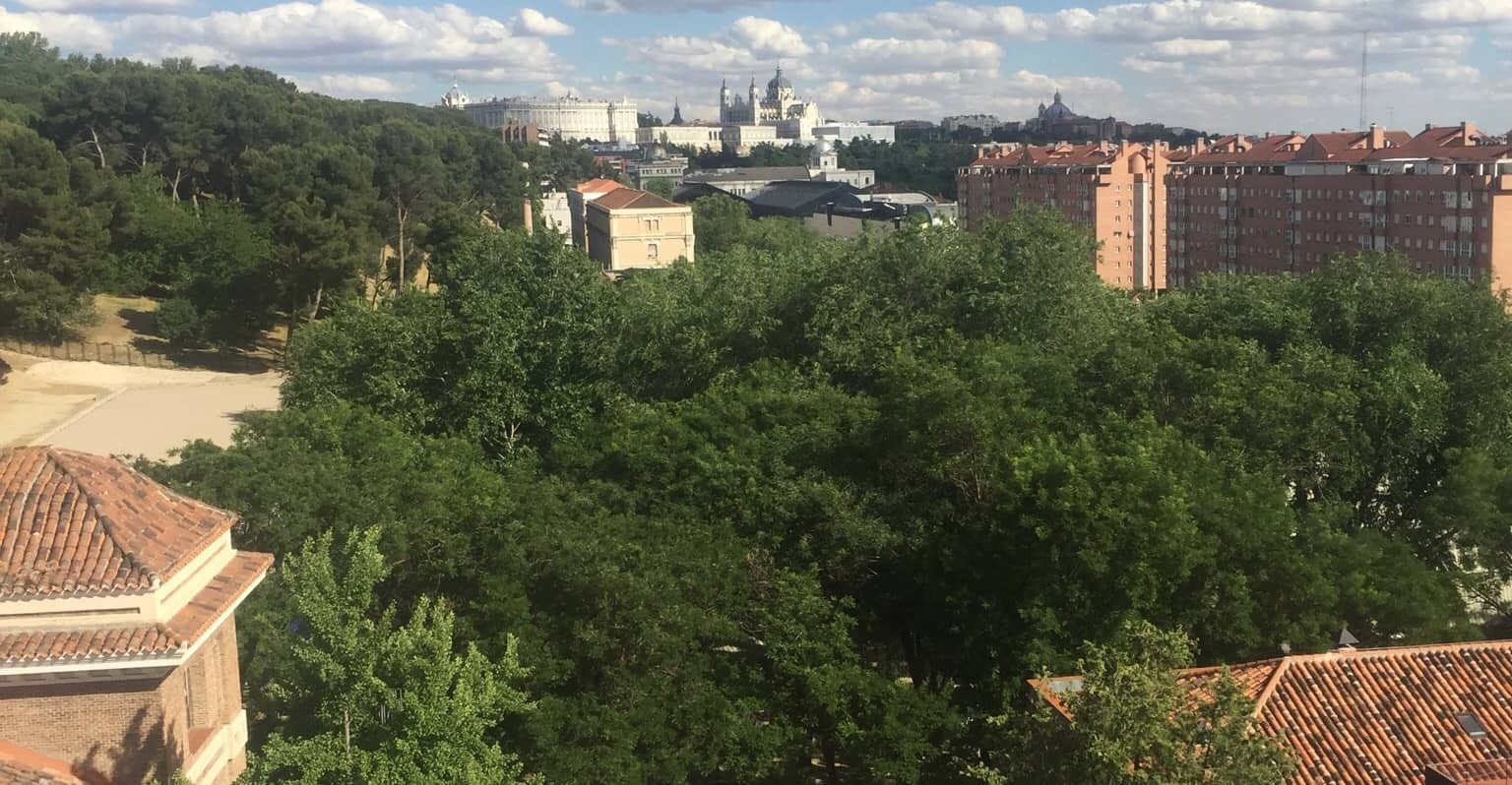 Can you see La Almudena in the distance? The Cathedral is our next door neighbor.