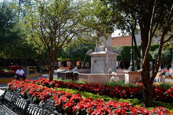 This expat's guide for living in Queretaro has everything you need to know about moving to Mexico!