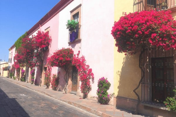 One of the best things to do in Queretaro is wander the cities beautiful streets!