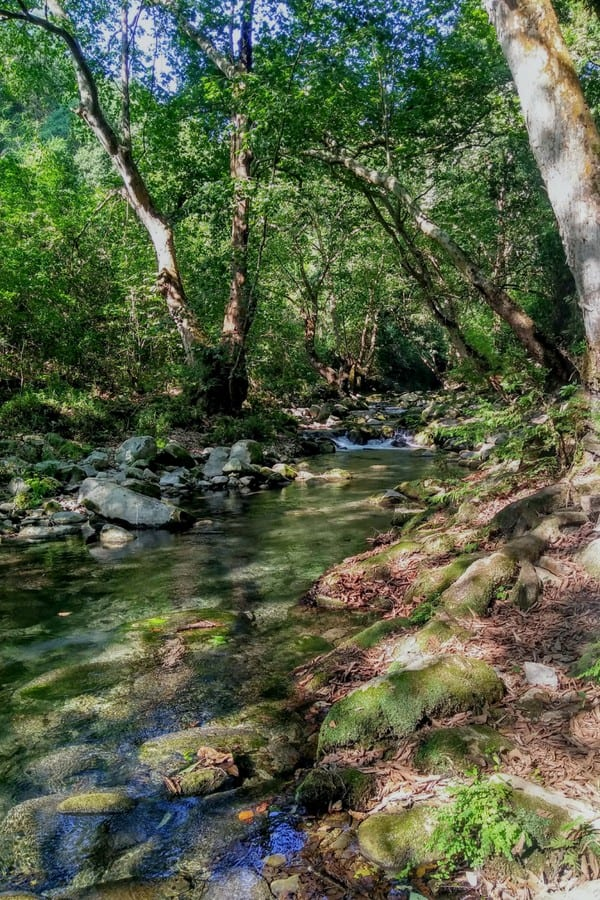Want to see a part of Mexico well off the beaten trail? Exploring the Sierra Gorda is worth the effort it takes to get to Querétaro's remote mountain range