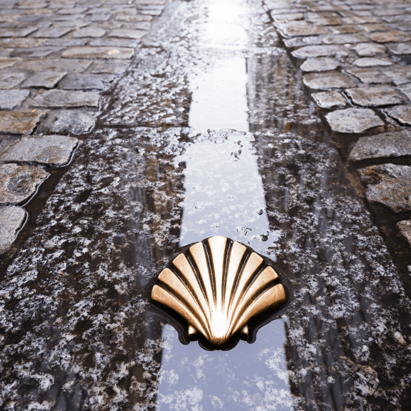 Everything You Must Know About The Camino de Santiago