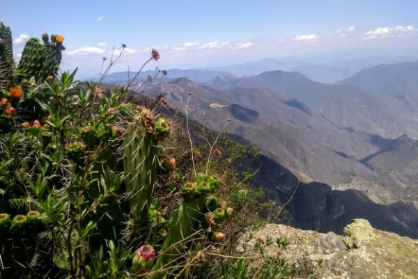 The sweeping views from Mirador Cuatro Palos. One of the best unknown places in Mexico is Jalpan de Serra!