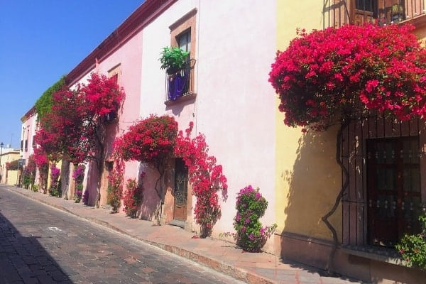 Wander the flower-lined streets of Queretaro and explore Mexico off the beaten path.