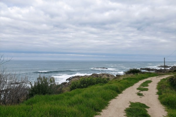 The Portuguese Camino Coastal route has stunning views of the sea.
