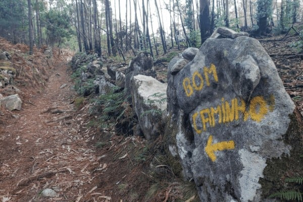 Follow the yellow arrows on the Portuguese Camino route.